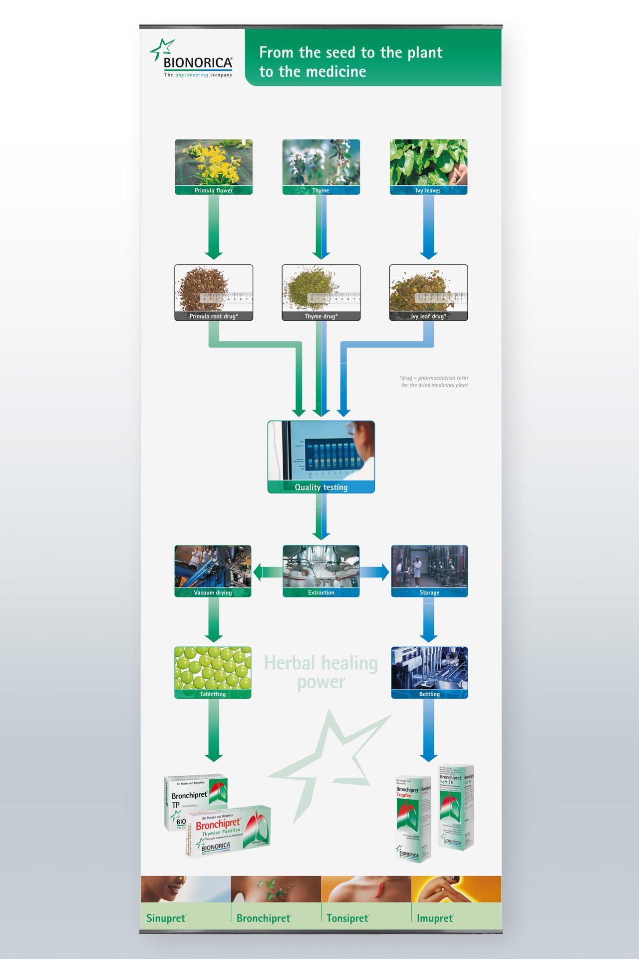 Erstellen von Infografiken